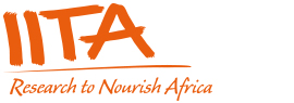Project Accounts Officer at International Institute of Tropical Agriculture (IITA)