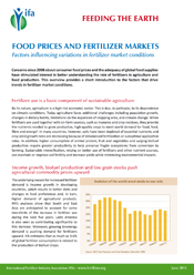 Food Prices and Fertilizer Markets. Factors Influencing the